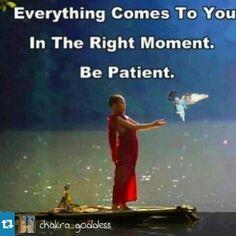 ✿Feliz Domingo✿  #patient #wisdom #peace #pray #amen #aquiyahora #hereandnow #paz #spiritual #meditation #namaste #gaiaqueremosqueseasfeliz