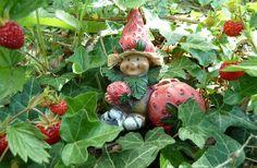 Un bonheur de fraise