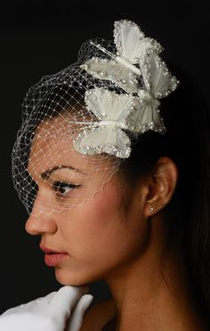 Butterfly Kisses birdcage veil by DashaB on Etsy (must have!!!)