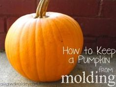 Keep pumpkins from molding by faye