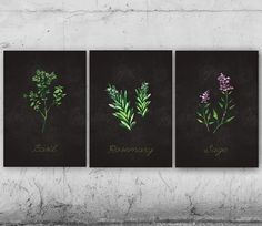 Herbs, Spices, Basil, Rosemary, Sage, Kitchen Art - Set of 3, printable poster, chalkboard, wall decor on Etsy, $10.00