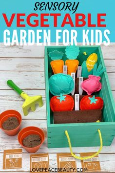 This vegetable garden sensory bin is a colorful, fun sensory experience that your child will love! This is the perfect spring or summer activity for kids. Toddlers, preschoolers and kindergarteners will have fun with this garden activity. Preschool Learning Toys, Sensory Activities Toddlers, Summer Activities For Kids, Sensory Bins, Toddler Preschool, Family Activities, Toddler Toys, Teaching Kids, Diy For Kids