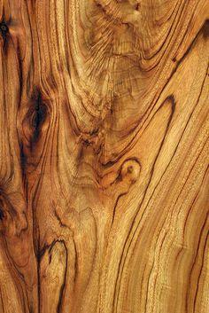 Wood Texture: Camphor Laurel - Holz Holz Textur: K Wood Patterns, Patterns In Nature, Textures Patterns, Wood Texture, Natural Texture, Texture Art, Texture Design, Natural Wood, Decoupage