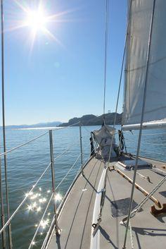 Gennifer Rose - Sailing in Sausalito