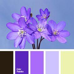 Color Palette: 1953