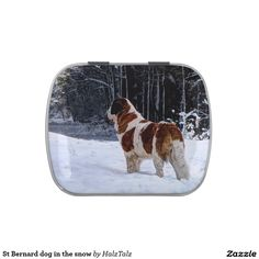 St Bernard dog in the snow Jelly Belly Tins