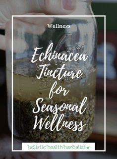 Echinacea Tincture for Seasonal Wellness - Holistic Health Herbalist