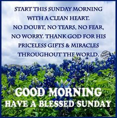 Good Morning, Have A Blessed Sunday good morning sunday sunday quotes good morning quotes happy sunday good morning sunday quotes happy… Blessed Sunday Morning, Blessed Morning Quotes, Sunday Morning Quotes, Have A Blessed Sunday, Sunday Quotes Funny, Morning Inspirational Quotes, Morning Blessings, Morning Prayers, Blessed Week