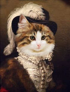 I Love Cats, Cute Cats, Fancy Cats, Photo Portrait, Cat Hat, Cat People, Renaissance Art, Pet Portraits, Royals