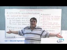 Estruturas Organizacionais - estruturas modernas - Professor Luis Octavi...