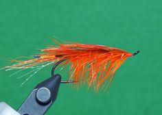General Practitioner - Orange