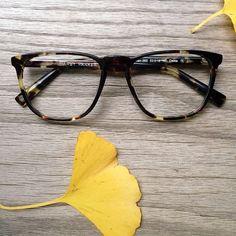 Warby Parker Vaughan frames in Burnt Lemon Tortoise.
