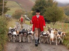The Rhythm of Rural Life - Blencathra Foxhounds, Cumbria. The John Peel Hunt.