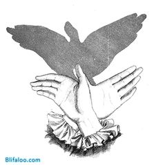 flying bird shadow puppet -- this website has drawings for a whole bunch of hand shadow puppets....
