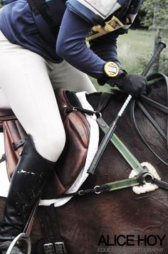it's not the horses choice. look at the veins, do you think he likes this life of being forced to perform for their EGO ! Downton Abbey, Jumping Saddle, English Riding, Show Jumping, Horse Pictures, Horse Photography, Horse Love, Equestrian Style, Horse Tack