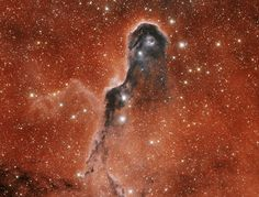 Elephant's Trunk Nebula / La nebulosa proboscide d'elefante