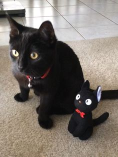 My friend Annie says: This cat looks just like my cat Oscar ~ I would love to get him a toy cat like this