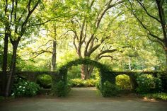 In fact, entering this garden is like walking into an outdoor mansion filled with green leafy rooms.