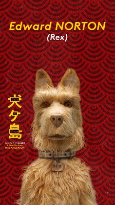 Search for screenings / showtimes and book tickets for Isle of Dogs. See the release date and trailer. Wes Anderson Style, Wes Anderson Movies, La Famille Tenenbaum, The Royal Tenenbaums, Isle Of Dogs, Vídeos Youtube, Beast, Wire Fox Terrier, Film Inspiration