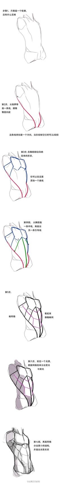 《上半身体块画法》,只要造型对了,结构就...: