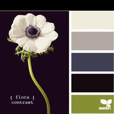 A Design Seeds, Colour Schemes, Color Combinations, Colour Palettes, Paint Palettes, Foto Memory, Color Concept, Color Palate, Color Stories