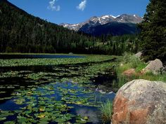 Top 10 Things to do or see in Rocky Mountain National Park | plain adventure
