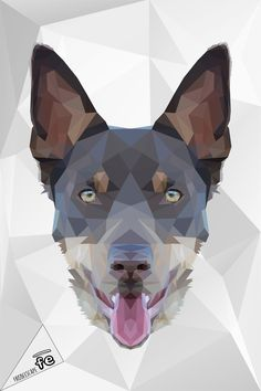 The graphic department of FrisbeEscape has realized these artworks for show his power. The images represent only the sample of possible creation. Contact us for more information at info@frisbeescape.com  Stay tuned. #dog #discdog #disc #frisbee #flydog #kelpie #kelpies #playdog #mascotas #perro #cane #juegos #gioco
