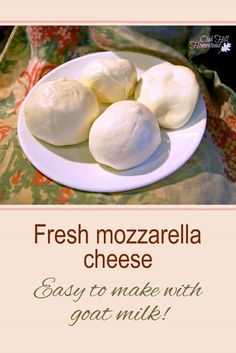 Do you need mozzarella cheese for your homemade pizza for tonight's dinner? If you have milk in the refrigerator, you can make mozzarella! Learn how in this post. Goat Milk Mozzarella Recipe, Make Mozzarella Cheese, Goat Milk Recipes, Goat Cheese Recipes, Making Goat Cheese, Homemade Goats Cheese, How To Make Cheese, Yorkshire Dales, Milk And Cheese