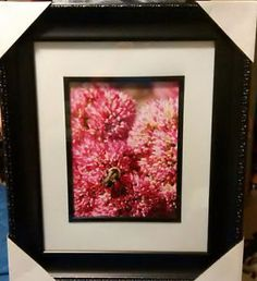 Framed prints & photo greeting cards for sale.