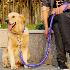 Cheap large dog leash, Buy Quality traction rope directly from China dog leash Suppliers: 2016 New High Quality Upgraded color collar stereotyped rope Large Dog Leashes Pet Traction Rope Collar Set For Big Dogs Big Dogs, Large Dogs, Pitbull, Le Plus Grand Chien, Luxury Dog Collars, Rope Dog Leash, Dog Collars & Leashes, Golden Retriever, Medium Dogs