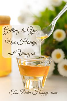 Getting to yes: Use honey not vinegar - Too Darn Happy. A tale of two similar people in near identical circumstances who used completely different approaches to get what they wanted.