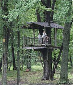 Sam, 11, and Joe Niemiec, 12, play in their backyard tree house along Obee Road.