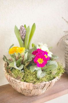 Spring in a pot Table Decorations, Spring, Plants, Garden, Furniture, Home Decor, Garten, Home Furnishings, Planters