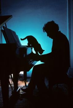 Philip Glass (the composer/musician) with his piano and his cat.
