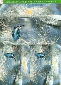 Pollyanna Pickering British Wildlife Collection 1 - traditional decoupage #10 - kingfisher