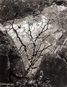 John Blakemore - Afon Gamlan, Wales, 1975 - by Dreweatts & Bloomsbury Tree Photography, Abstract Photography, Landscape Photography, Fine Art Photo, Photo Art, Natural Interior, Gelatin Silver Print, Ansel Adams, Plein Air