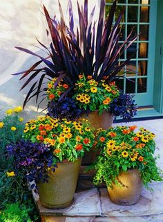 Fall ensemble : You can spruce up any porch, yard, patio or balcony using colorful, low maintenance plants. Arrange a spectacular fall display in the garden Beautiful Gardens, Beautiful Flowers, Beautiful Gorgeous, Fall Containers, Decoration Plante, Autumn Display, Fall Planters, Fall Potted Plants, Low Maintenance Plants