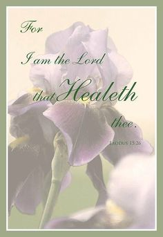 .Exodus  15:26  For I am the Lord that healeth thee.