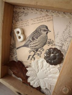 idea for shadow box + incorporate found feathers and butterfly wings