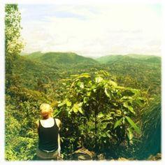Vue sur la jungle du Parc Taman Negara, Malaisie http://www.trace-ta-route.com/recits/malaisie-trek-dans-la-jungle-au-coeur-du-parc-national-taman-negara/