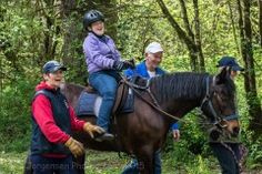 Healing Horses: the therapy of horseback riding Horse Therapy, Horse And Human, Horseback Riding, Horse Racing, Healing, Horses, Animals, Animales, Animaux