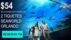 Paquetes de Viaje Todo Incluido de Hotel y Entradas a SeaWorld Orlando...