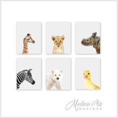 Animal Art Animal Nursery Print Zoo Animals by ModernMixDesigns, 4 unframed 8x10 $40, 11x14 $55, 16x20 $100 - mix and match animals, calligraphy and background dots optional