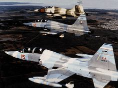 from Cold Lake in formation. Airplane Fighter, Fighter Aircraft, Fighter Jets, Military Jets, Military Aircraft, Canadian Army, Tiger Ii, Freedom Fighters, Jet Plane