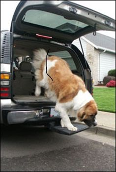 Otto Step for traveling with your dog in a Truck or SUV  and NO LIFTING #OttoStep