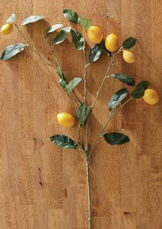 This lifelike lemon branch makes the perfect accent in arrangements, centerpieces, vases and more.