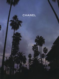 chanel palm trees