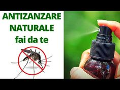 Come fare uno SPRAY ANTI ZANZARE Naturale e FACILISSIMO!!! | Carlitadolce - YouTube