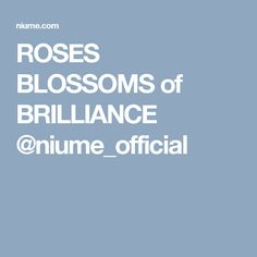 ROSES BLOSSOMS of BRILLIANCE @niume_official