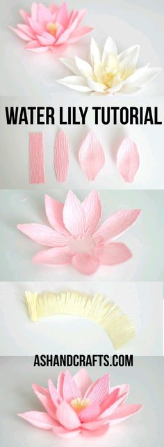 DIY Paper Flowers - Crepe Paper Water Lily - How To Make A Paper Flower - Large Wedding Backdrop for Wall Decor - Easy Tissue Paper Flower Tutorial for Kids - Giant Projects for Photo Backdrops - Dais Giant Paper Flowers, Felt Flowers, Diy Flowers, Fabric Flowers, Wedding Flowers, Flower Diy, Flower Paper, Wedding Bouquets, Paper Flowers How To Make